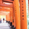 Touring the Fushimi Inari Shrine in Kyoto