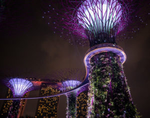 Supertrees Light Show