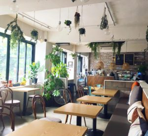 Plant Cafe in Seoul